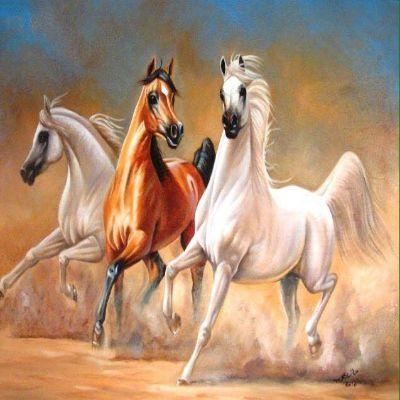 رسمة خيول